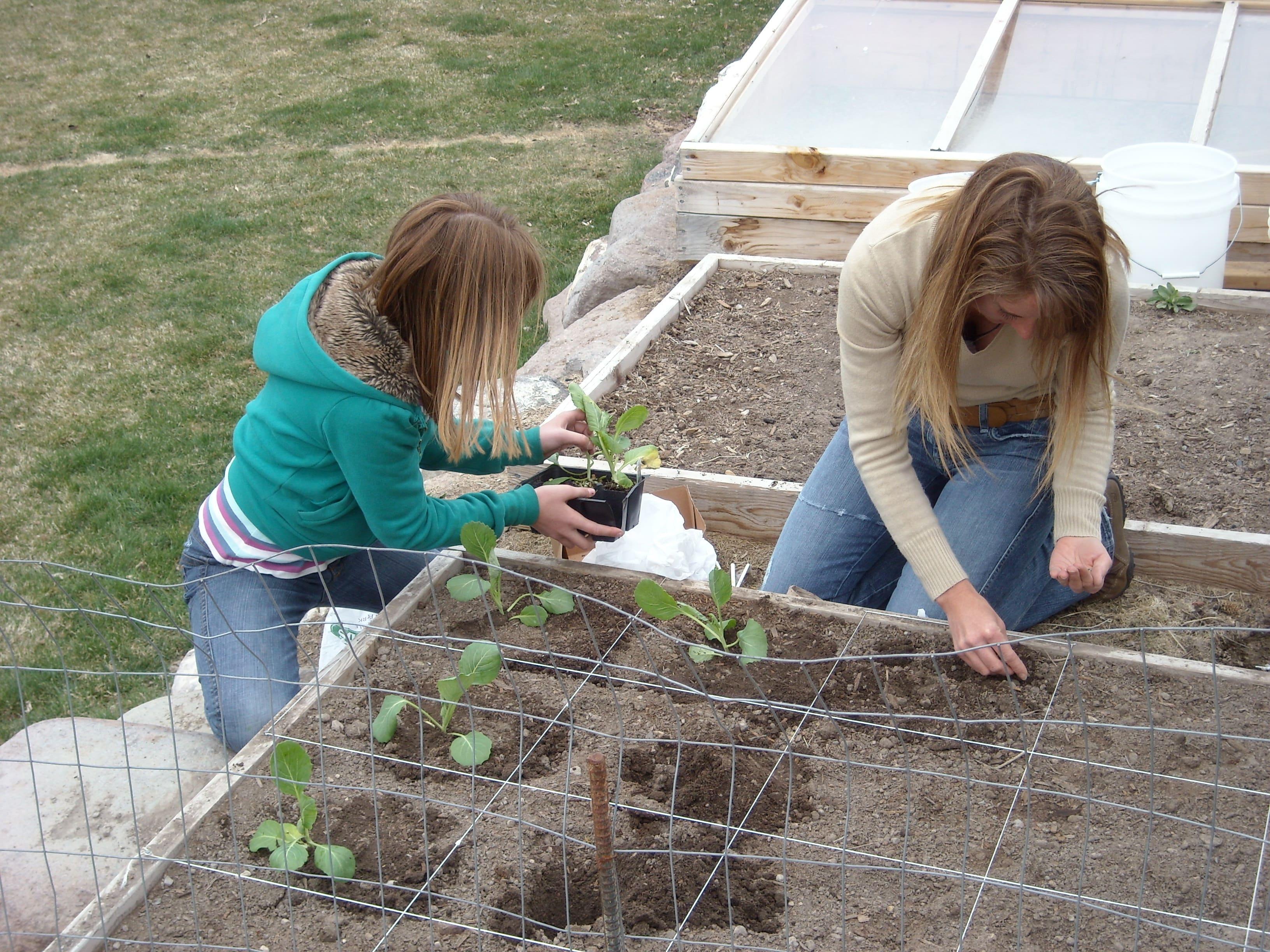 planting-april-08-5.JPG