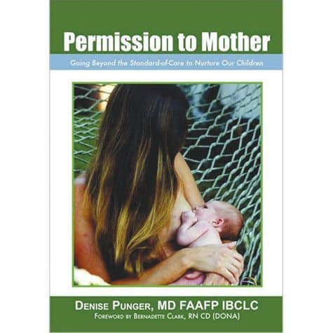 Book cover - Permission to Mother - Denise Punger, MD