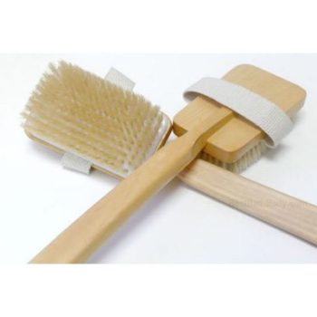 Skin Brush With 4-Color Laminated Chart