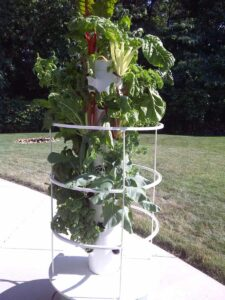 Cathi's fantastic Tower Garden