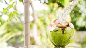Feature | Coconut Water Benefits | The Virtues of Coconut Water
