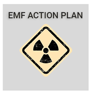 light-grey-emf-action-plan