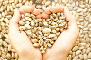 Photo of hands holding beans in heart shape from