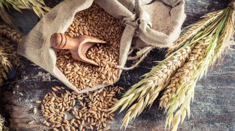 Feature | Wheat Is Good For You! (But Not How You're Eating It)