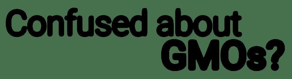 GSG New Header 2017