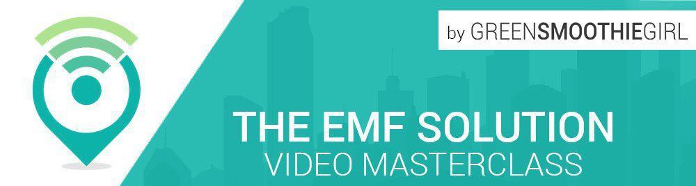 EMF Solution-banner