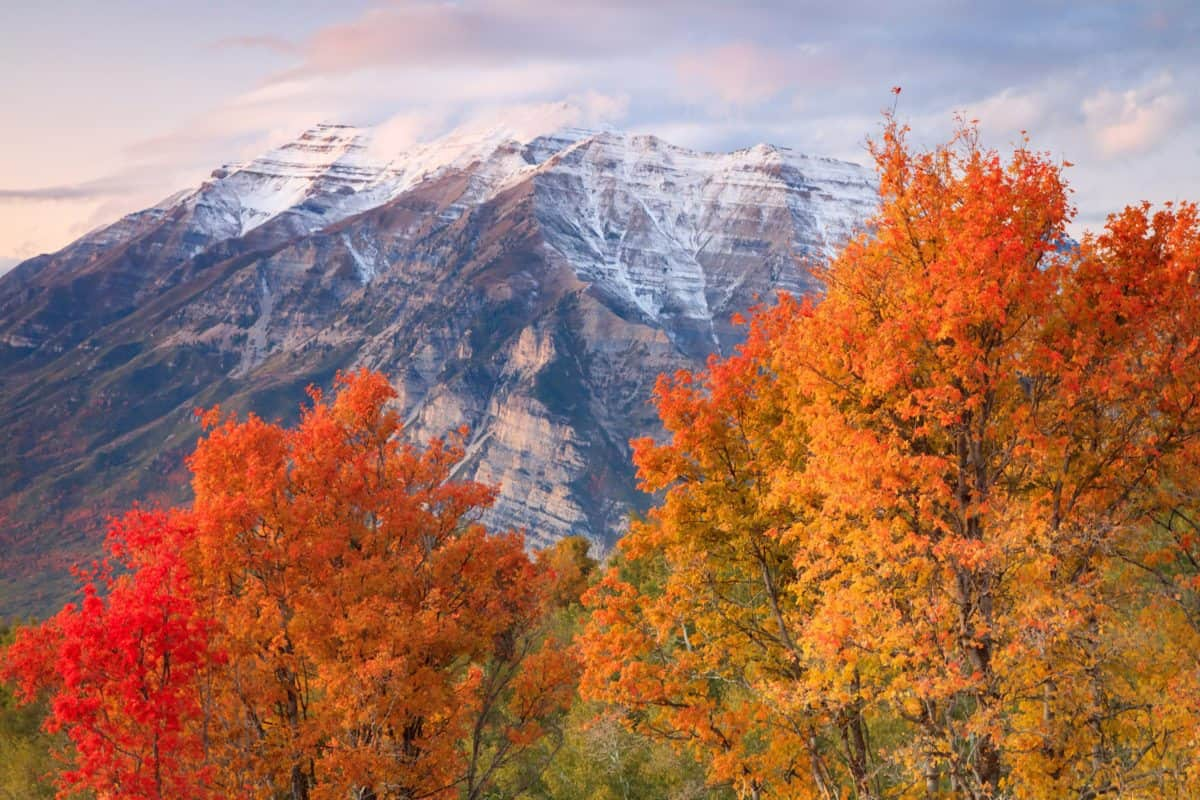 beautiful fall day in the Wasatch Mountains, Utah