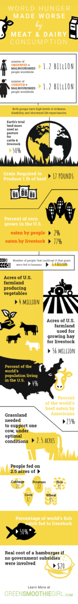 Infographic: A review of John Robbins' Epic Work, The Food Revolution