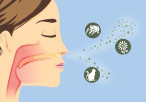 How to Clean Up Indoor Air Pollution at Home
