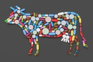 Tablets, pills and capsules. In the shape of a cow. 3d-Illustration.