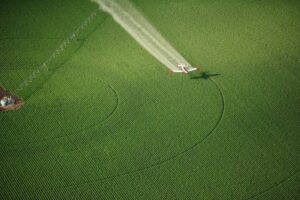 An aerial view of an agricultural crop duster flying low over a potato field, spraying chemicals.