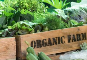 Image of a box full of produce from an organic farm. Blog post: What Does ORGANIC Mean?