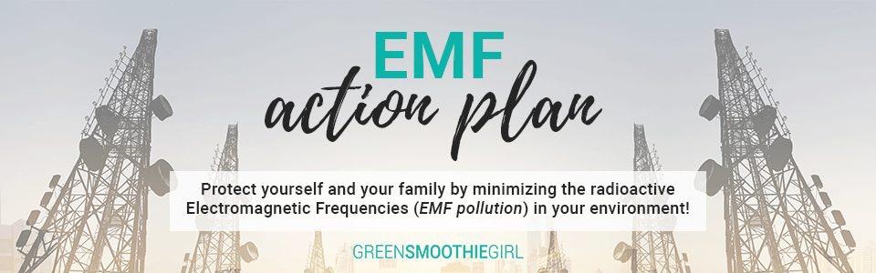 emf-action-plan-banner