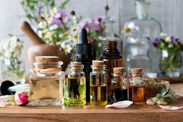 Herbs vs Essential Oils | An Overview of the Vibrational Frequency of Essential Oils