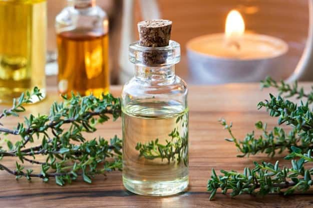 Plants As Medicine | An Overview of the Vibrational Frequency of Essential Oils