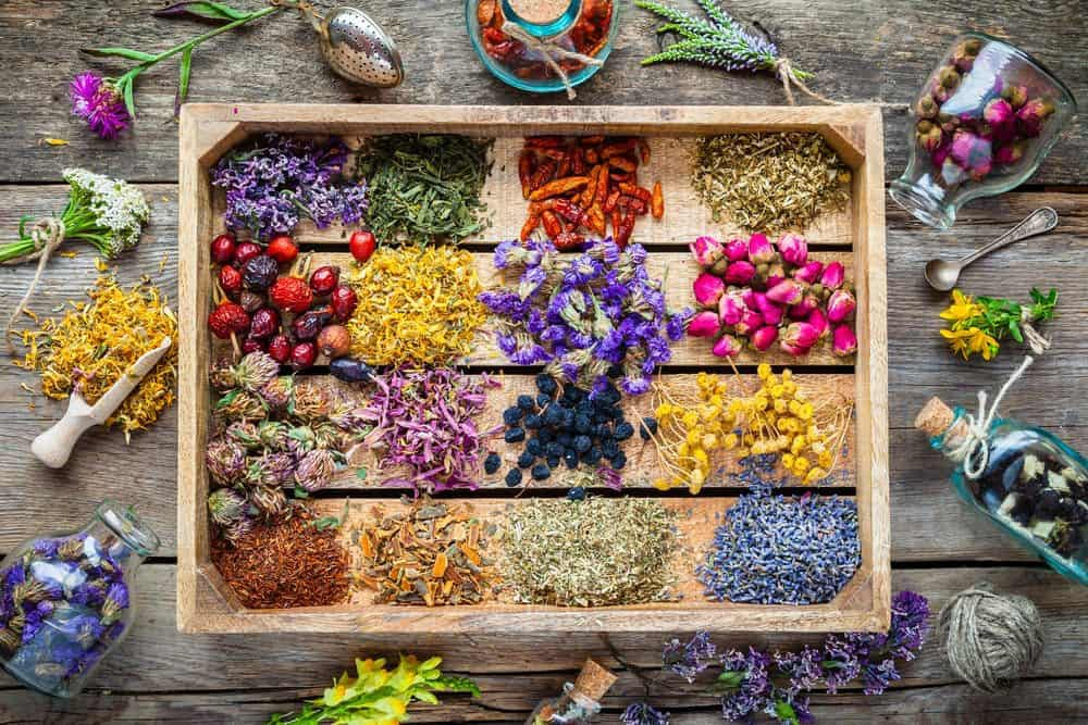 The Vibrational Frequency of Essential Oils