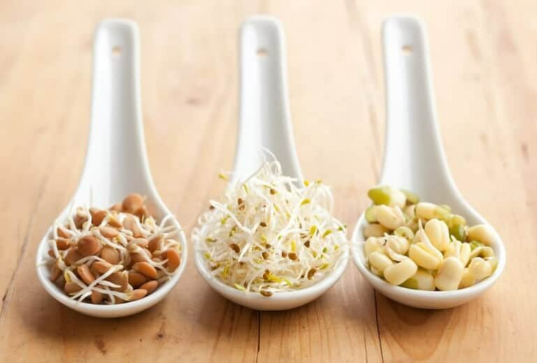 "Photo of three white spoons holding sprouted beans from ""How Digestive Enzymes Work--And Why You're Probably Deficient"" blog post by Green Smoothie Girl"