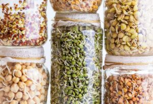 Blog: Sprouting 101: How to Sprout Grains, Nuts, and Seeds at Home