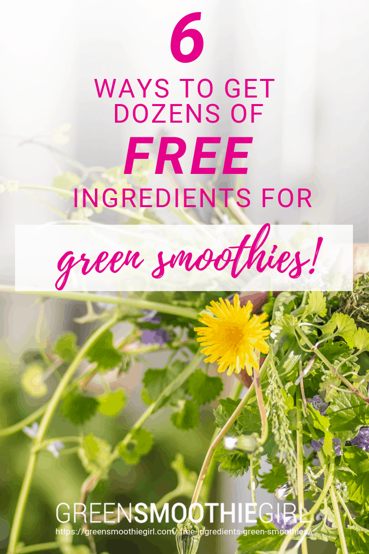 6 Ways to Get Dozens of Free Ingredients for Green Smoothies