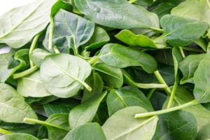 "Photograph of a pile of green spinach leaves, from ""11 Greens to Use in Green Smoothies"" at Green Smoothie Girl."