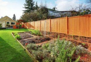 Photo of a backyard garden, from