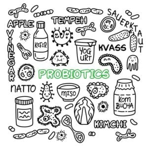 "Graphic of probiotics from ""Why Digestive Enzymes Matter--and Why You're Deficient"" at Green Smoothie Girl."