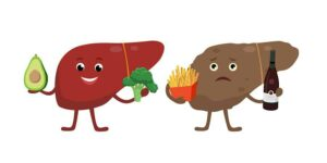 Graphic healthy and unhealthy liver from