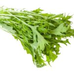 """Photo of mustard greens on white background from """"Mustard Greens Mambo"""" recipe from Green Smoothie Girl"""