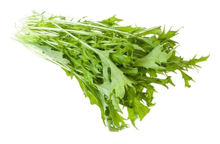 "Photo of mustard greens on white background from ""Mustard Greens Mambo"" recipe from Green Smoothie Girl"
