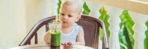 Toddler boy in high chair touching green smoothie from