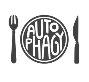 "Flat vector illustration of a plate with Autophagy lettering on it with a fork and a knife from ""Why I Developed The Flash Fast: Modified Fasting Made Easy And Fun"" by Green Smoothie Girl"