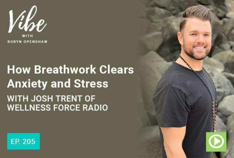 Vibe Podcast 205 Josh Trent