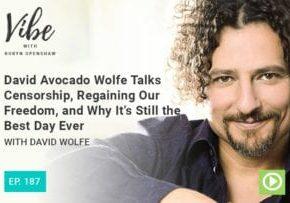 Vibe Podcast 187 David Wolfe